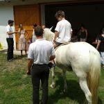 A gyrerekeknek lovaglásra is volt alkalmuk, igaz, csak az udvaron belül